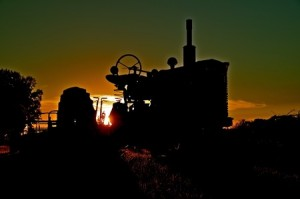 Farmall-Sunset-300x199